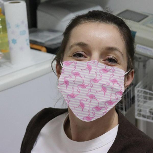 Flamingos Cloth Face Mask